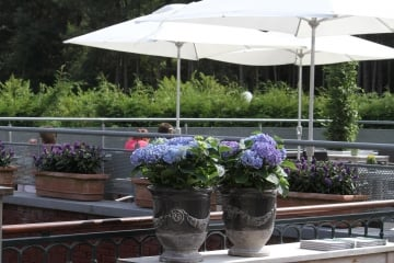 hotel_stiemerheide_bar-terras_IMG_2938